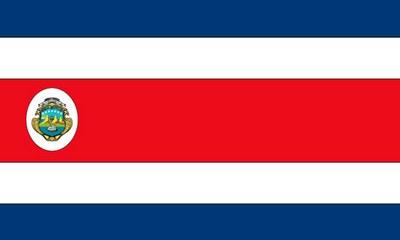 2D Flag LG