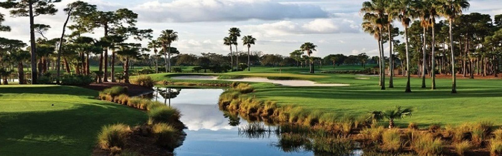 Golf Courses For Sale-Water Hazzard