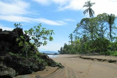 Corcovado Nat'l Park Beaches