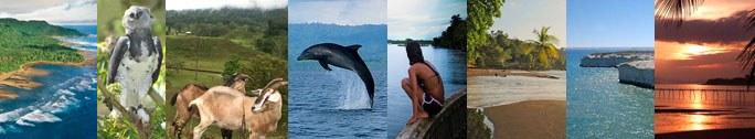 Actividades en la Península de Osa en la región del Pacífico Sur de Costa Rica