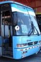 City Bus Service2