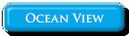 Ocean View Button